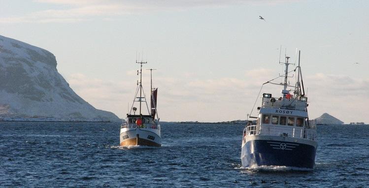 Fiske skip i sjøen